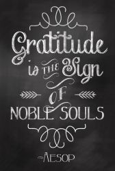 Gratitude is a character of a noble soul