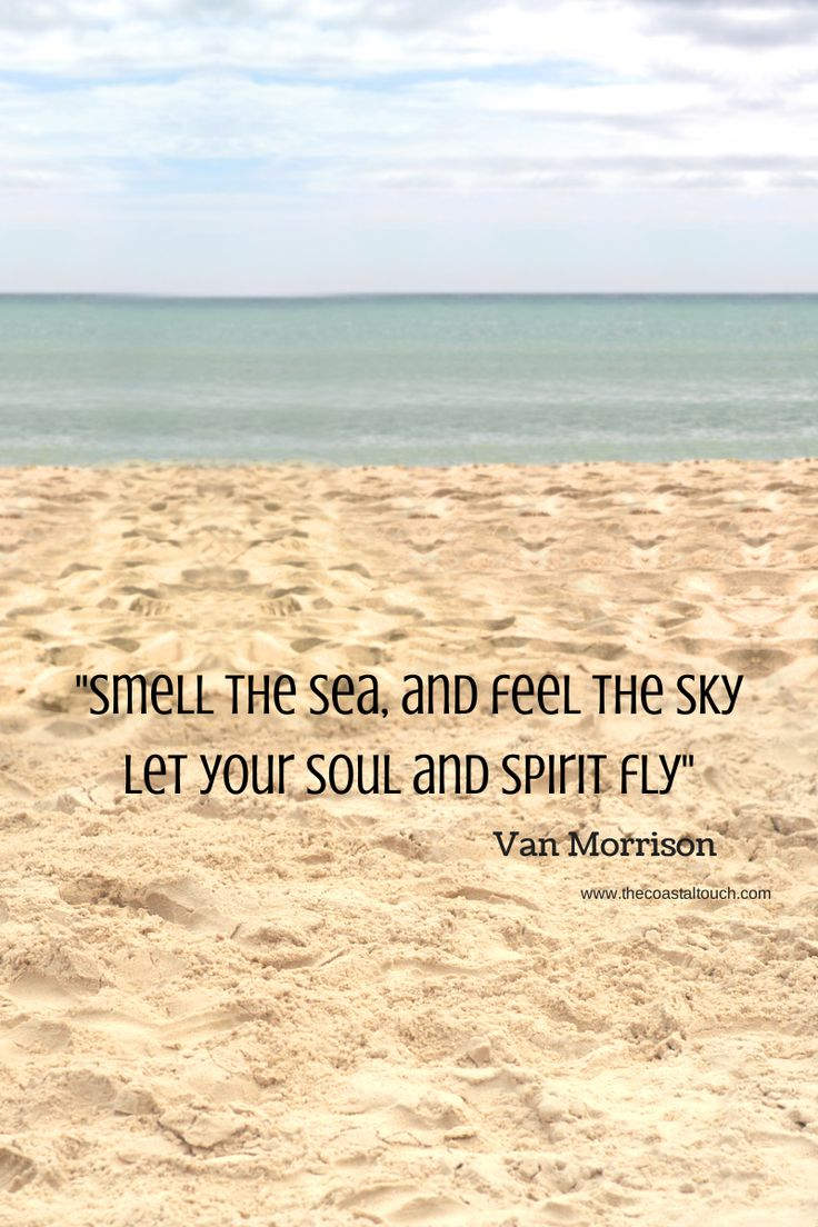 Dip Your Toes In The Sand Swim In The Sea Fleur De Lyz