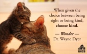 Always choose to be KIND